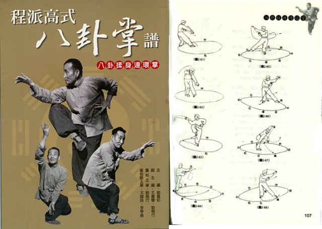 Gao baguazhang manual