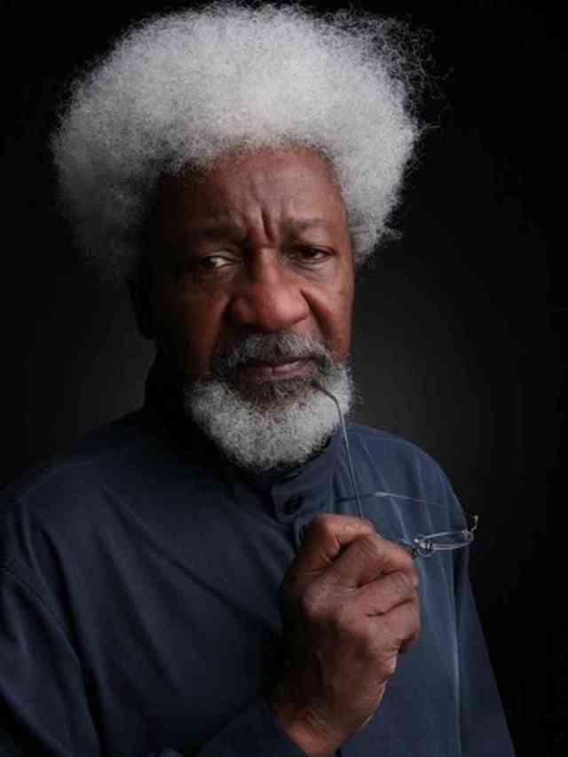 Wole Soyinka by Glen Gratty