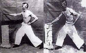Iron Palm master Gu Ruzhang