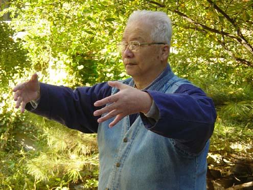 Dr Yu Yongnian - Yi Quan master.